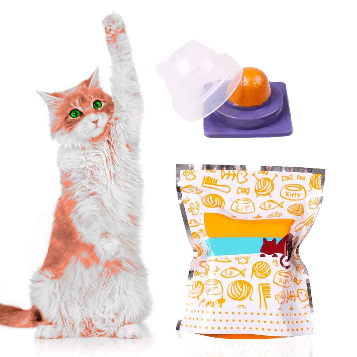 Healthy Cat Snacks